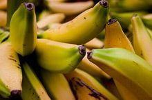 Бананово молочна дієта