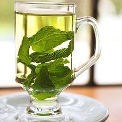 Як правильно приймати чай з м`ятою при вагітності
