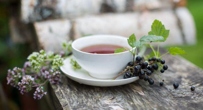 чай з листям смородини