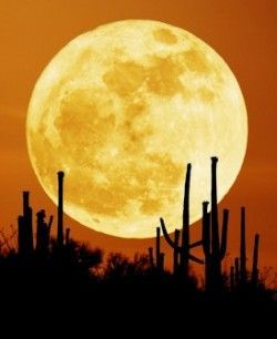 Місячний календар: використовуй місяць в своїх цілях