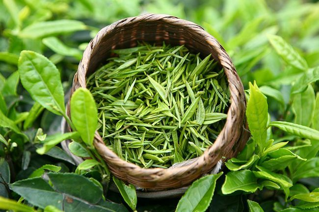 зелений чай для шевелюри