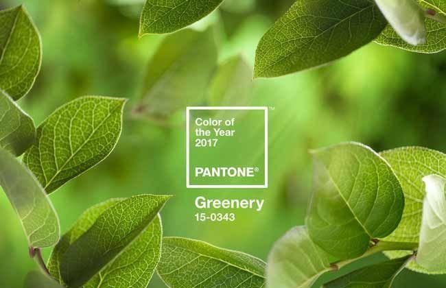 Pantone оголосив найголовніший колір 2017 року
