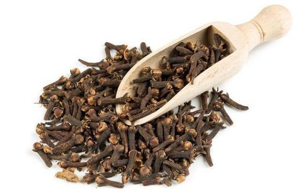 Корисні властивості гвоздики і застосування гвоздичної масла в кулінарії і медицині