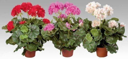 Переваги штучних квітів в інтер`єрі квартири - практично і вишукано
