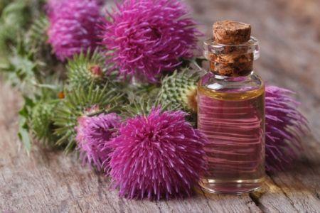 Застосування реп`яхової олії в косметології
