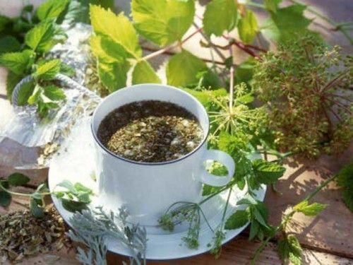 Трави для схуднення і рецепти очищувальних відварів і настоїв