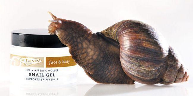 Равликовий крем для обличчя