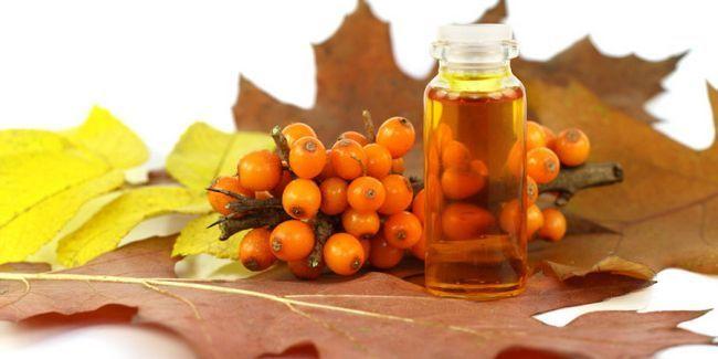 У чому користь обліпихової олії