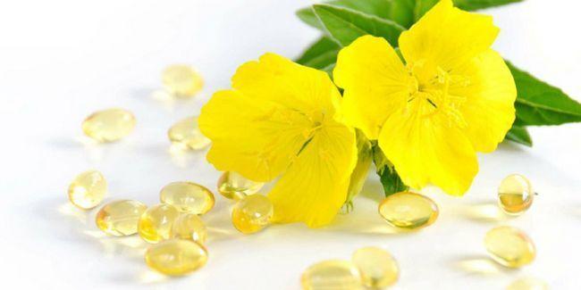 Жіноче здоров`я: корисні властивості олії енотери (примули вечірньої)